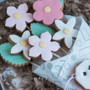 normal_bunch-of-biscuit-flowers