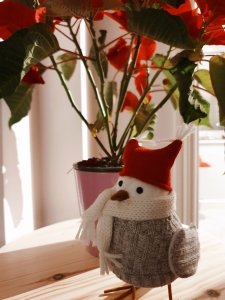 Christmas Bird Decoration