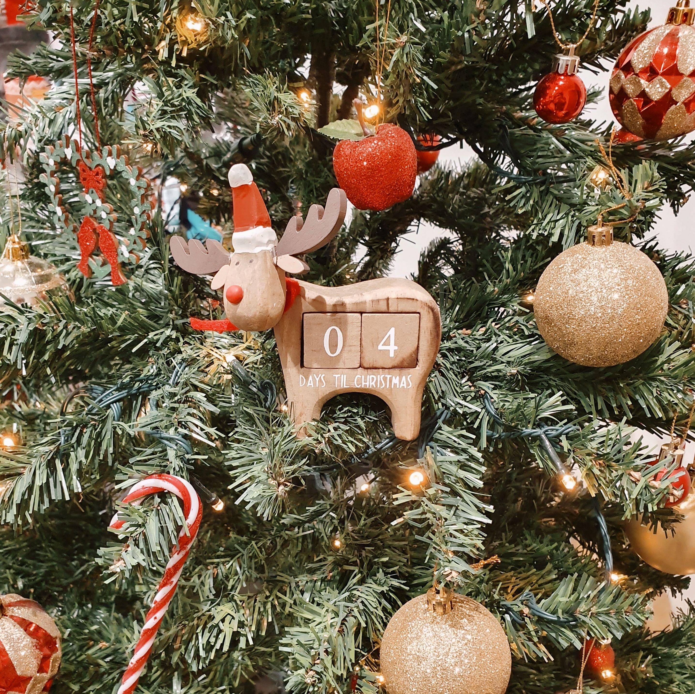 Christmas Decs